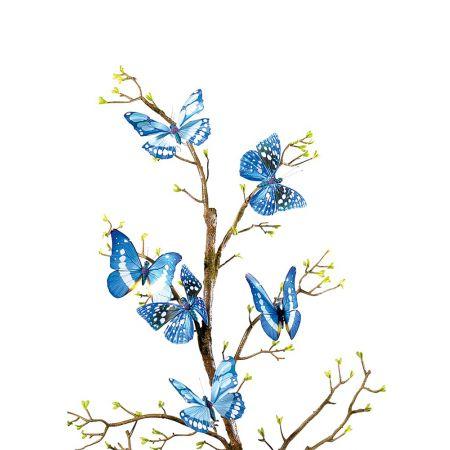 Σετ 6 τεμαχίων πεταλούδες Μπλέ, 15x10cm