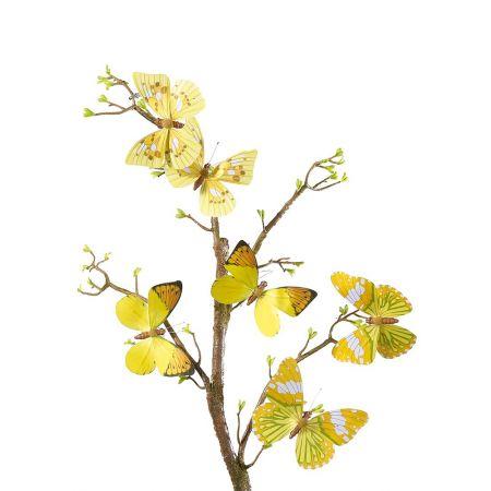 Σετ 6 τεμαχίων πεταλούδες Κίτρινο, 15x10cm