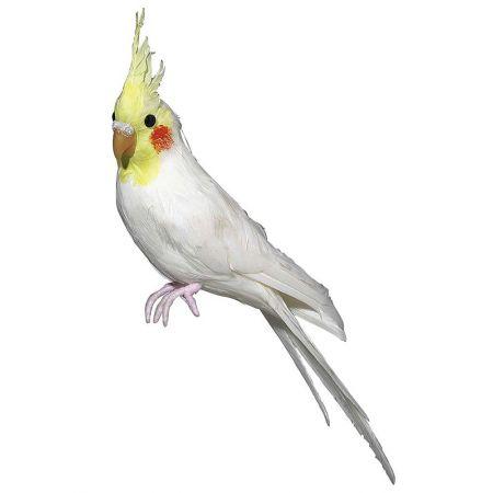 Διακοσμητικός παπαγάλος Κακατούα, Λευκό - Κίτρινο 31cm