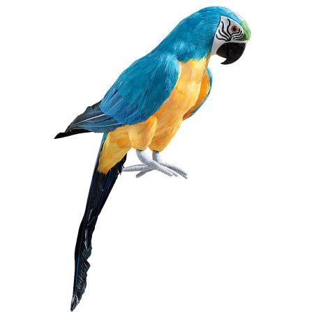 Διακοσμητικός παπαγάλος Μπλέ 70cm