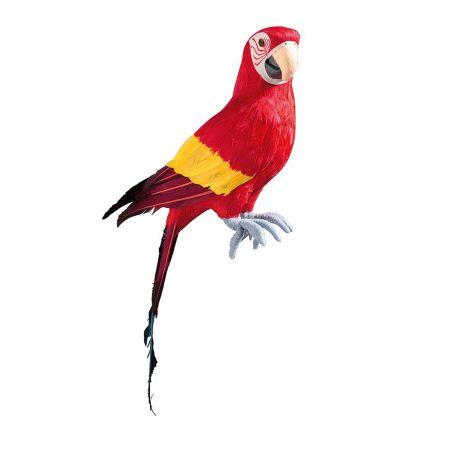 Διακοσμητικός παπαγάλος Κόκκινος 77cm