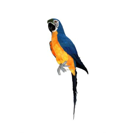 Διακοσμητικός παπαγάλος Μπλε 67cm