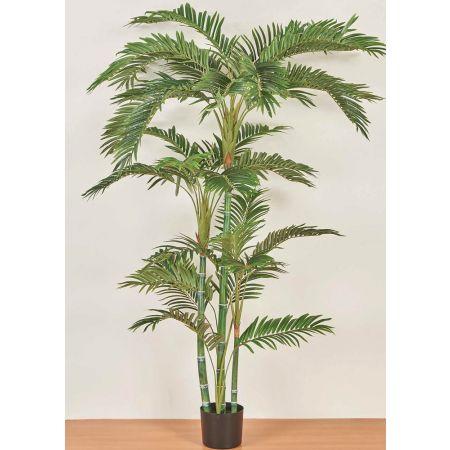 Τεχνητό φυτό Κέντια σε γλάστρα Πράσινο 180cm