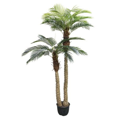 Real Touch Τεχνητό δέντρο Φοίνικας σε γλάστρα 250cm