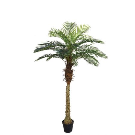 Real Touch Τεχνητό δέντρο Φοίνικας Αρέκασε γλάστρα 210cm
