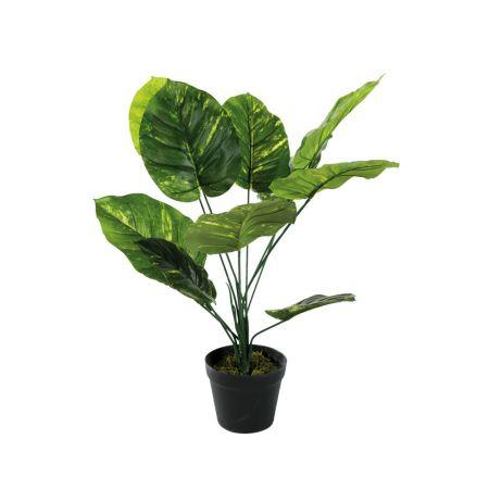 Τεχνητό εξωτικό φυτό Φυλλόδεντρο σε γλάστρα 60cm