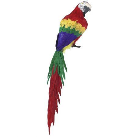 Διακοσμητικός παπαγάλος - Macaw 120cm