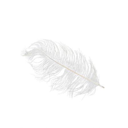 Σετ 2τμχ. Φτερό Στρουθοκάμηλου λευκό , 35-40cm