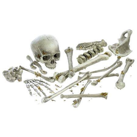 Σετ Διακοσμητικά ανθρώπινα οστά 15-40cm