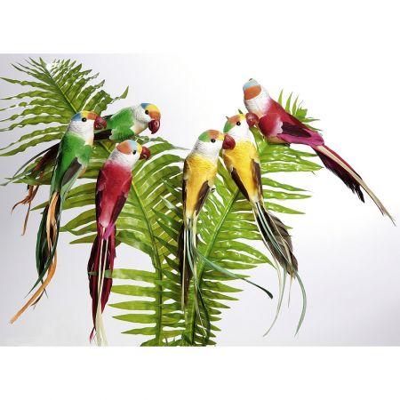 Σετ 6τμχ. Διακοσμητικοί παπαγάλοι 22cm