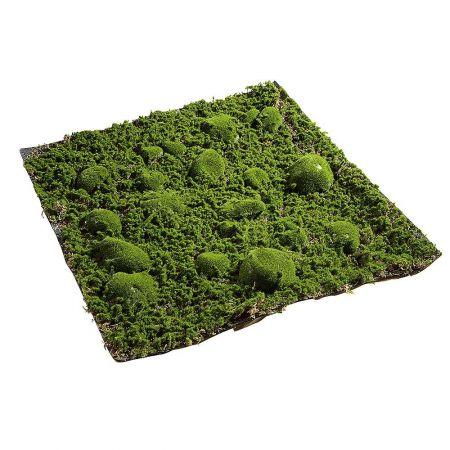 Διακοσμητικό πάνελ - τάπητας με βρύα 50x50cm