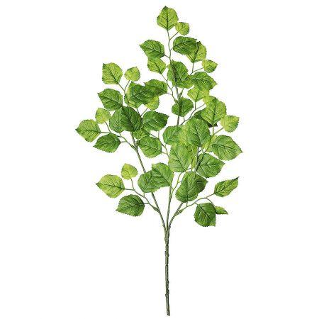 Διακοσμητικό κλαδί με φύλλα Οξυάς 64cm