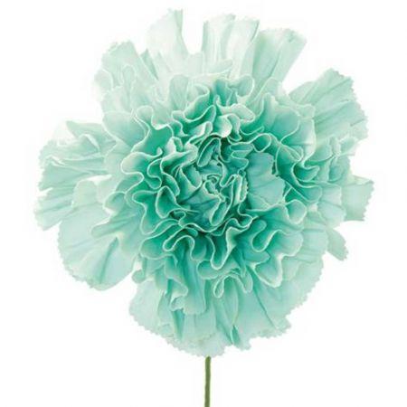 XL Διακοσμητικό λουλούδι - άνθος foam Βεραμάν 80x60cm