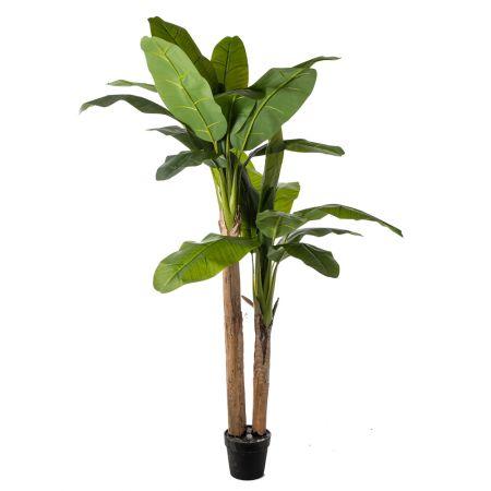 Διακοσμητικό τεχνητό δέντρο μπανανιά σε γλάστρα 200cm