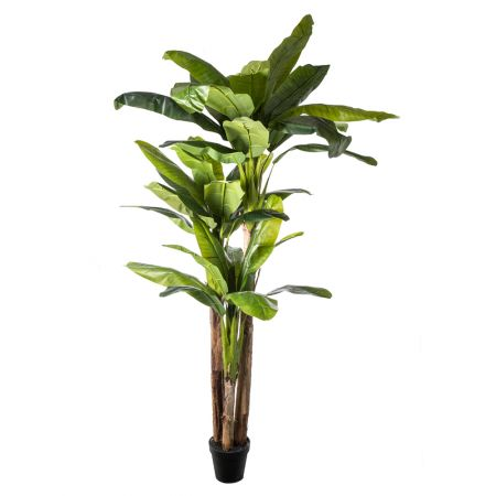 Διακοσμητικό τεχνητό δέντρο μπανανιά σε γλάστρα 250cm