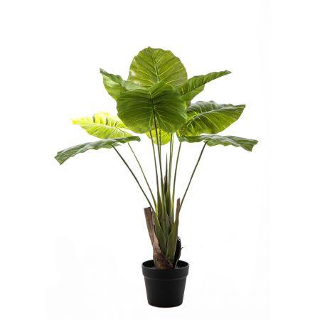 Διακοσμητικό τεχνητό φυτό Συγκόνιουμ σε γλάστρα 80cm