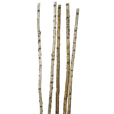 Σετ 5τχ Κορμοί Σημύδας 3-6x170cm