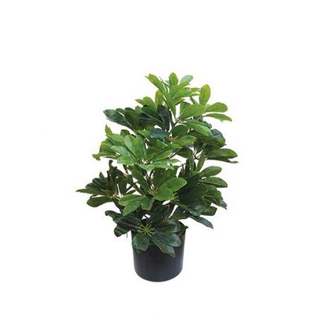 Real Touch Τεχνητό φυτό Σεφλέρα σε γλάστρα 61m