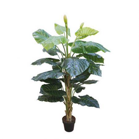 real Touch Τεχνητό φυτό Πλατύφυλλο σε γλάστρα 65cm