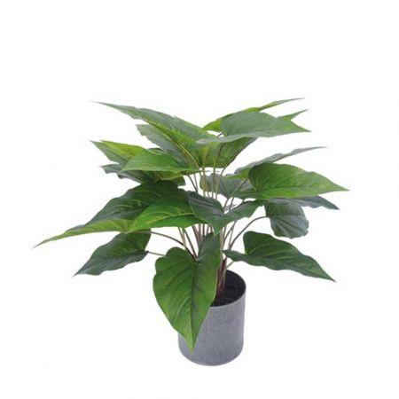 Τεχνητό φυτό Ανθούριο σε γλάστρα 450cm