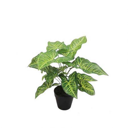 Real Touch Τεχνητό φυτό Καλάδιο σε γλάστρα 30cm