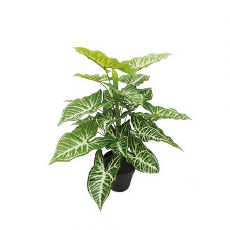 Real Touch Τεχνητό φυτό Καλάδιο σε γλάστρα 45cm