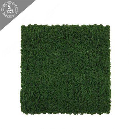 Πλακάκι Βρύα Πράσινο 50x50cm