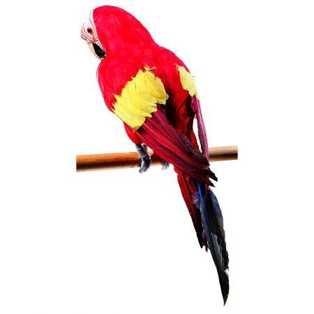 Διακοσμητικός παπαγάλος, κατασκευασμένος από σκληρό αφρώδες υλικό με πραγματικά φτερά.