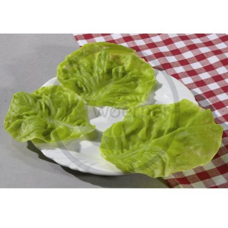 Σετ 3τμχ Διακοσμητικά φύλλα μαρουλιού-απομίμηση 10cm, 11cm, 14cm