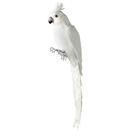 Διακοσμητικός παπαγάλος Κακατούα Λευκός 70cm