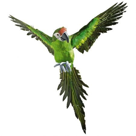 Διακοσμητικός παπαγάλος με ανοιχτά φτερά Πράσινος 77cm