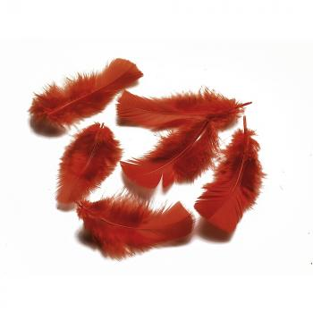 Φτερά - Πούπουλα