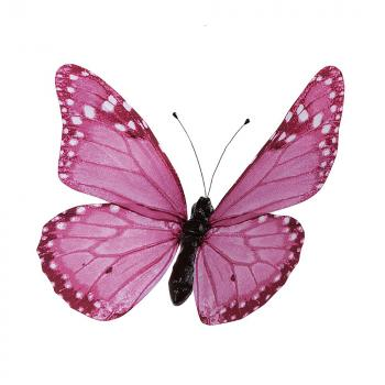 Διακοσμητικές πεταλούδες