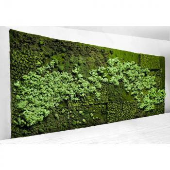 Πλακάκια γρασίδι - Κάθετοι κήποι