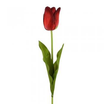 Λουλούδια για βάζα