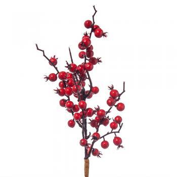 Κλαδιά με Berries - Γκι
