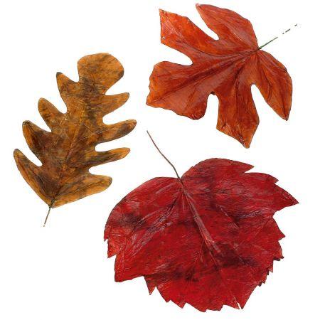 Σετ 3τμχ XL Φθινοπωρινά φύλλα, 80cm