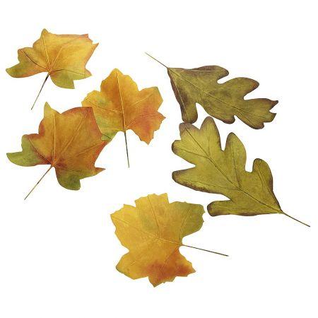Σετ 6τμχ XL φύλλα Φθινοπωρινά 32cm