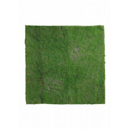AB7362334 Διακοσμητικό Moss γκαζόν 50x50cm