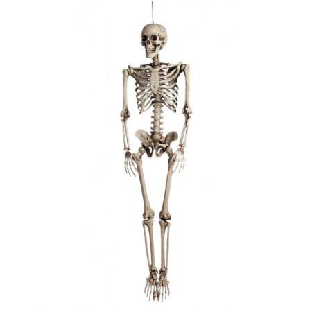 Διακοσμητικός Σκελετός 160cm, φυσικό
