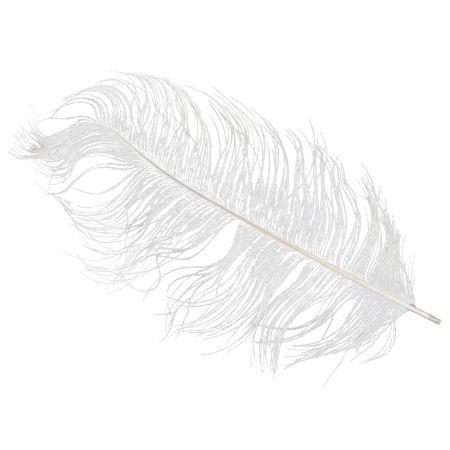 Σετ 5τμχ. Φτερό Στρουθοκάμηλου λευκό , 28cm