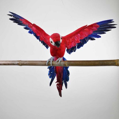 Παπαγάλος με ανοιγμένα φτερά Κόκκινος 50cm