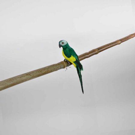Διακοσμητικός Παπαγάλος Πράσινος 25cm