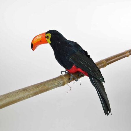 Διακοσμητικό Πουλί Τουκάν Μαύρο 35cm