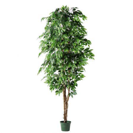 Τεχνητό δέντρο φίκος - benjamini σε γλάστρα 210cm