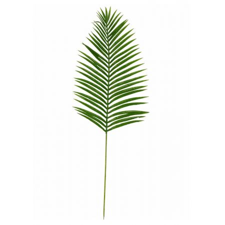 Διακοσμητικό φύλλο φοίνικα , 120cm