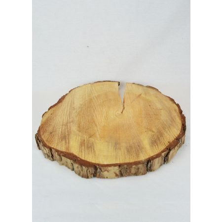 Διακοσμητική φυσική ροδέλα από κορμό Πεύκου 35-45cm