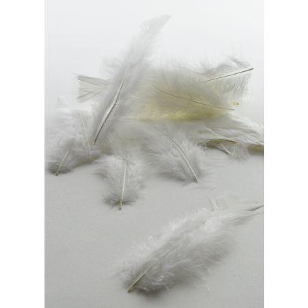 Σετ 24τχ φτερά - πούπουλα Λευκά 15cm