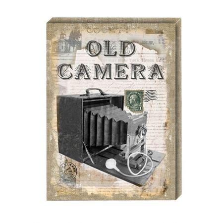 Διακοσμητικός Καμβάς Old Camera 41x56cm