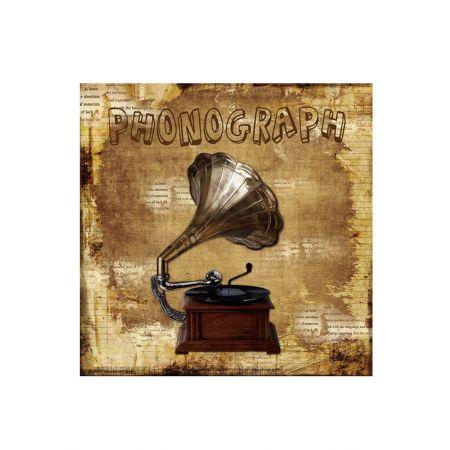 Διακοσμητικός Καμβάς Phonograph 40x40cm
